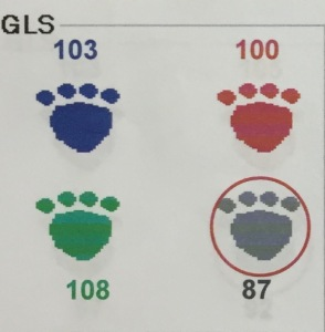 GLS Score for website